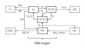 odd oxygen